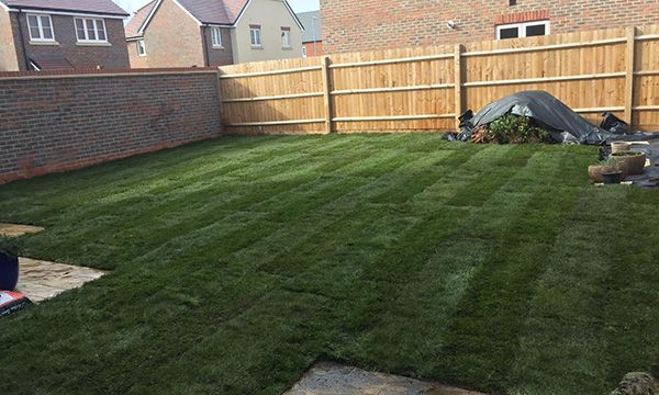 Turfing Project